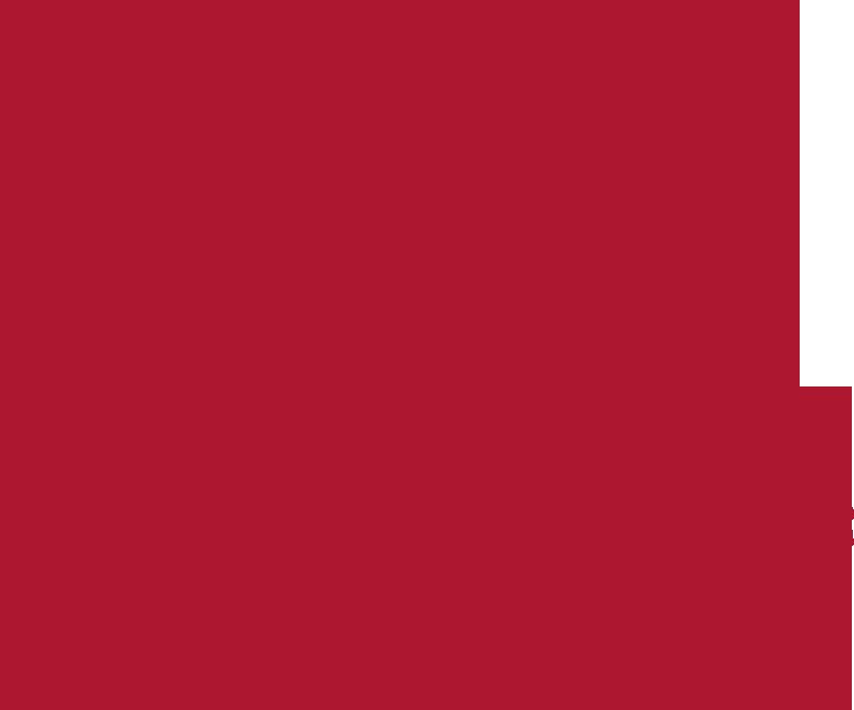Biber Motorboot-Charter Magdeburg